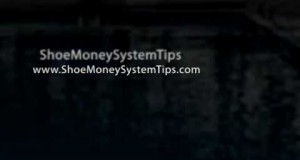 ShoeMoney-System-Tips-Online-Income-Step-by-Step-Video-Tra