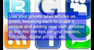 Generate Another Income With Private Label Articles