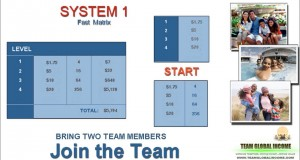 team-global-income-system-1